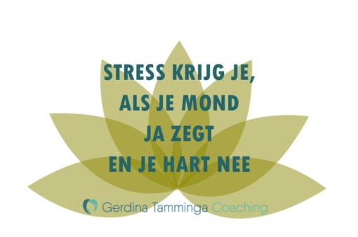 stress krijg je als je mond